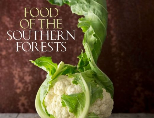 Food of the Southern Forests by Sophie Zalokar with Photography by Craig Kinder