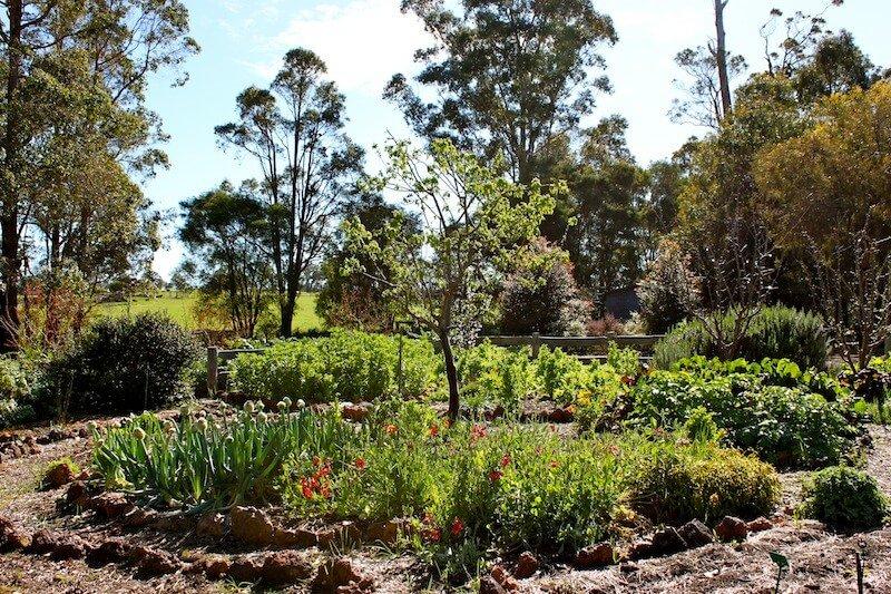 Kitchen Garden View to North